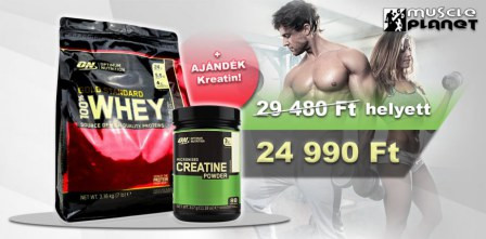 ON Gold Standard 100% Whey + BCAA Akció!
