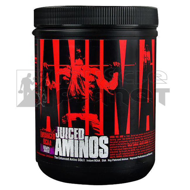 Animal Juiced Aminos (368 g)