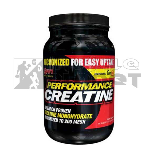 Performance Creatine Unflavored (1200 g)